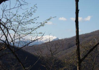 Rifugio degli Alpini di Concesio